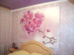 Орхидеи с подсветкой на стене