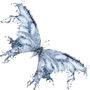 бабочки 025