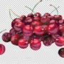 фрукты 003