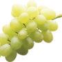 фрукты 011