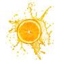 фрукты 023
