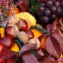 фрукты 025